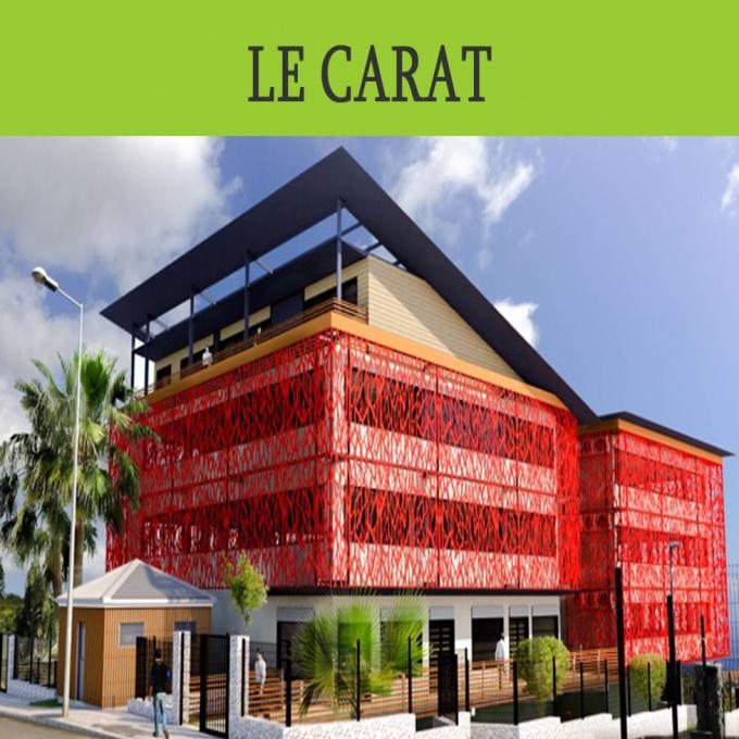 Vente Immobilier Professionnel Local commercial L'Éperon (97435)