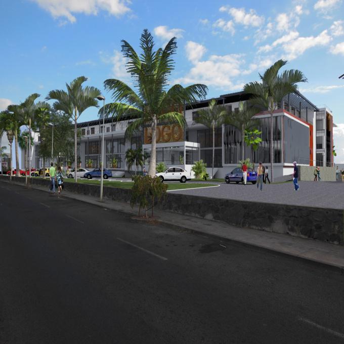 Location Immobilier Professionnel Local commercial Saint-Paul (97460)