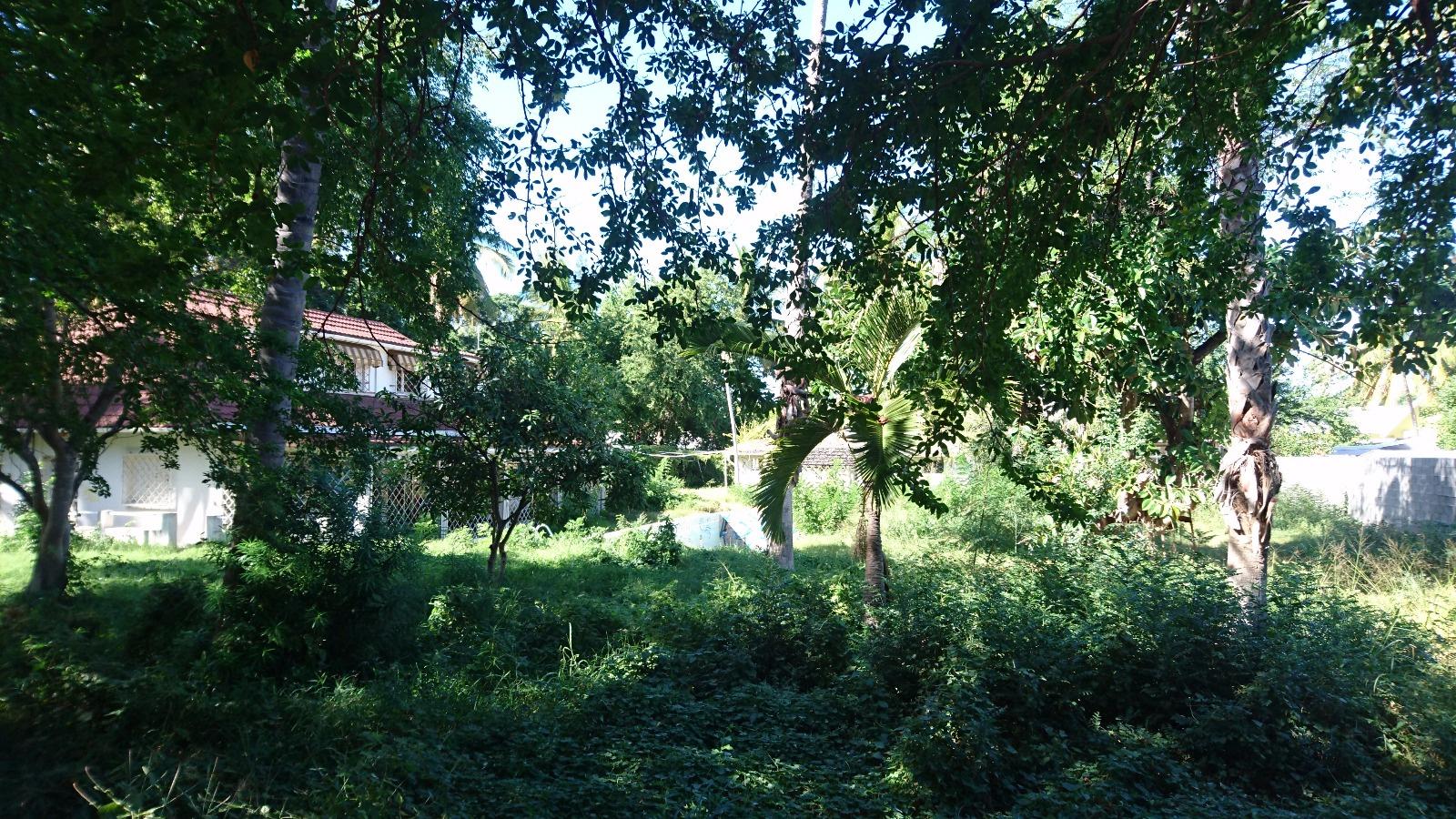 Offres de vente Terrain Ermitage les bains (97434)